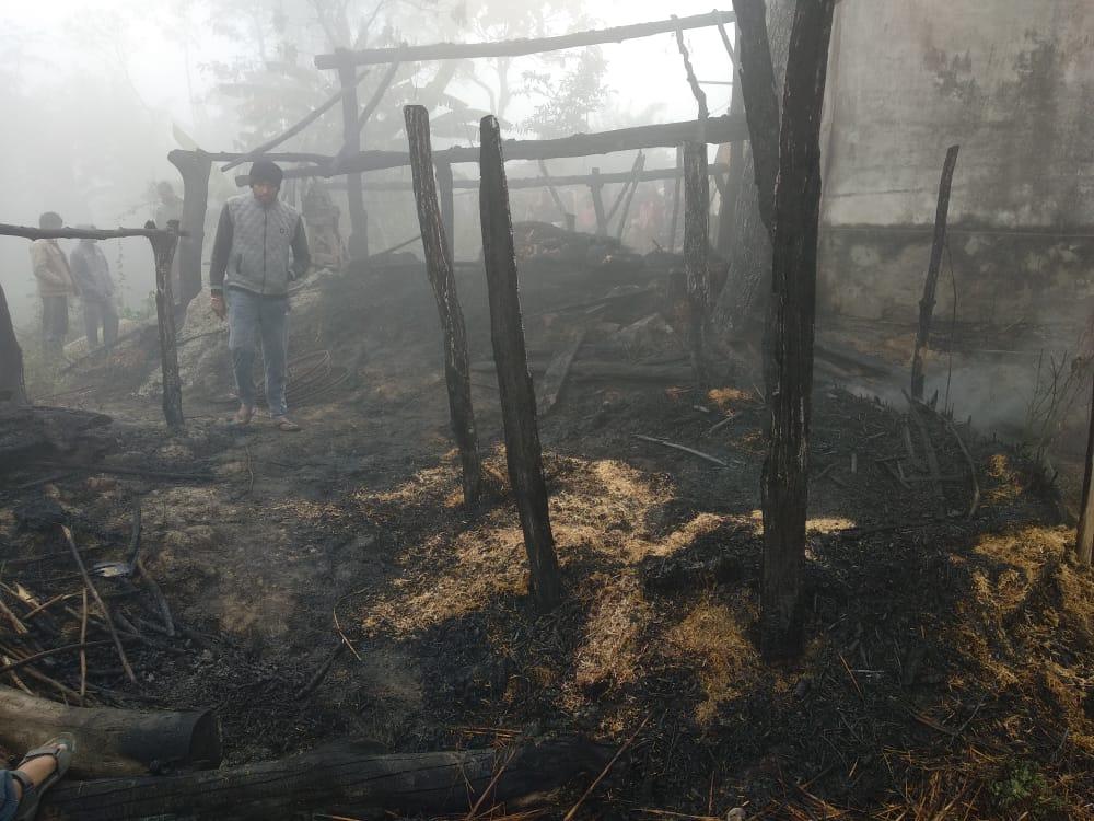 Maharajganj: भीषण आग का तांडव दो मवेशी की मौके पर हुई मौत, एक बुरी तरह से झुलसी