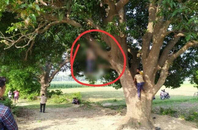 नहर के किनारे आम के पेड़ से लटकता मिला युवक का शव, क्षेत्र में मचा हड़कंप